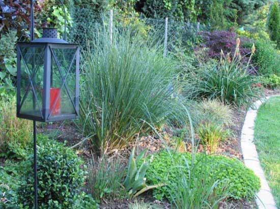 pflegeleichter Garten, ein Projektbeispiel