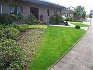 Moderner vorgarten mit hauseingang und garagenauffahrt for Gartengestaltung 70 qm