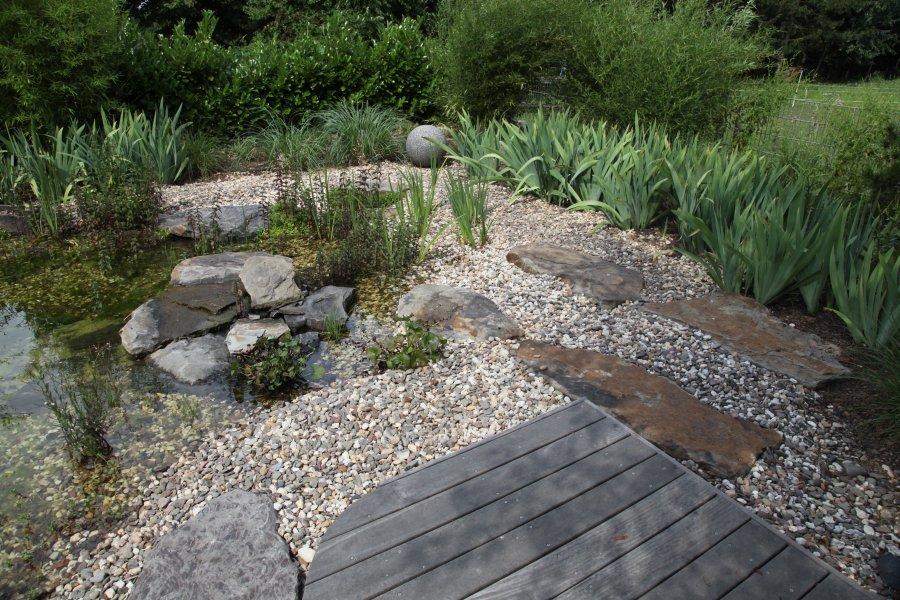 Garten und schwimmteich nach zwei jahren for Garten randgestaltung