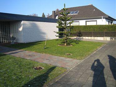 kiesgarten als vorgarten mit splitt. Black Bedroom Furniture Sets. Home Design Ideas