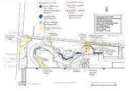 Blumenzwiebel-Plan 'mediterran' und 'architektonisch'