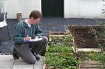 Vollständigkeitskontrolle der Pflanzen