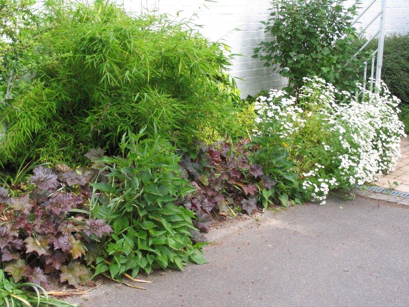 Alten, 1.200 qm großen Garten neu gestalten