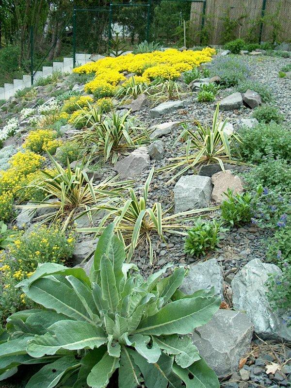 Der Garten mit Steingarten ist fertig.
