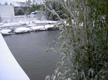 Teichpflege for Gartenteich im winter