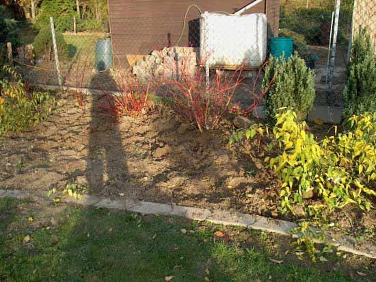 Pflegeleichter Garten Ein Projektbeispiel