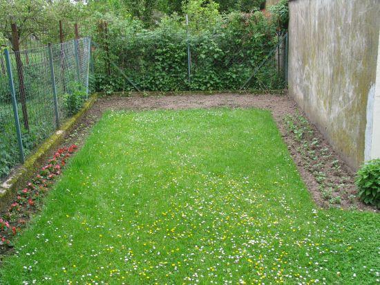 blumenbeet mit sommerblumen – gartenplanung düsseldorf, Garten und Bauen
