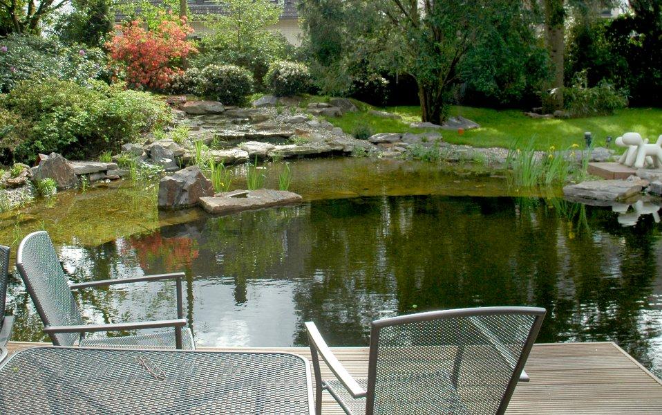 Der neu angelegte wassergarten im sommer for Muscheln gartenteich