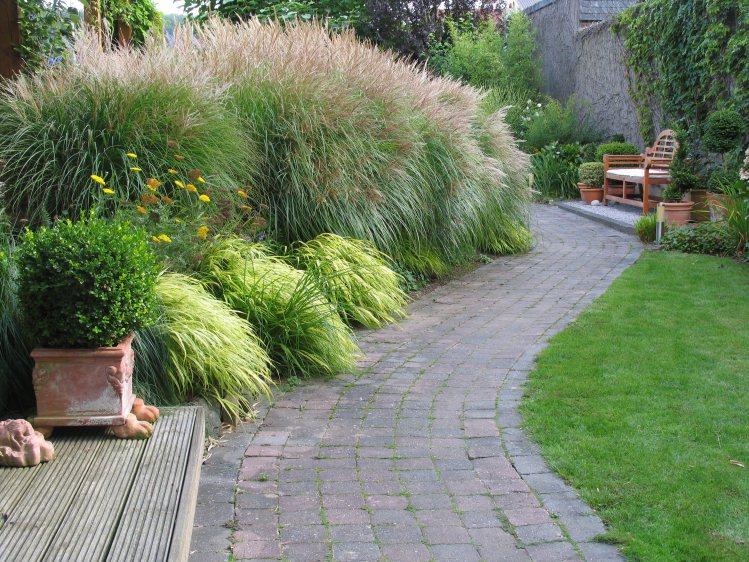 vorgarten mit gr, Garten und bauen