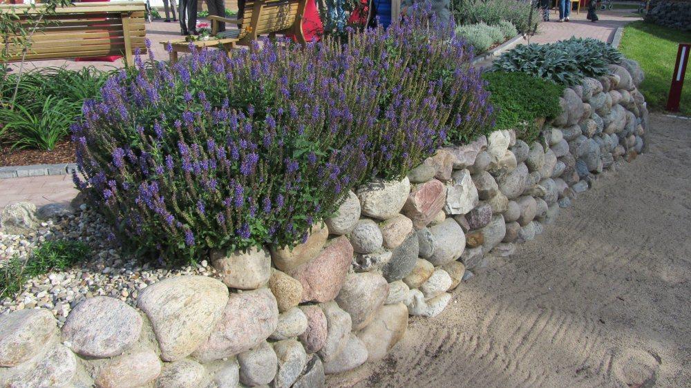 Friesenwall Bepflanzen sinnesgarten anlage mit boot und frisenwall