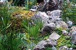 Flachwasserzone mit Felsen
