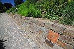 Trockenmauer mit Bewuchs