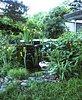Wasserfall mit Sumpf-Schwertlilie