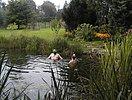 Taucher mit Tauerbrille und Schnorchel im Schwimm-See