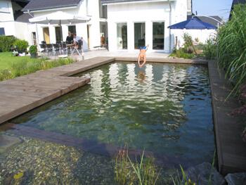 Kopfsprung von angrenzender Terrasse direkt in den Schwimmteich