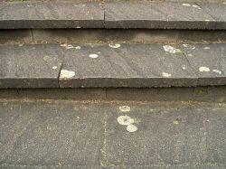 erneuerungsbedürftige Betonsteinplatten