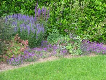 die bepflanzung- wir machen sie im ganzen jahr schön und, Garten und Bauen