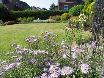 Blick vom Gartenpavillon in den neu angelegten Garten
