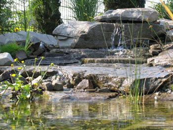 Wasserlauf am Schwimmteich