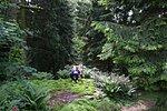 Direkte Lage am Wald mit verwunschenen Sitznischen