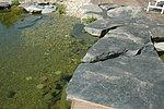 Trittsteine aus Ruhrsandstein führen über das Wasser