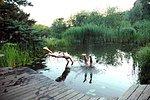 Badespass im Schwimmsee