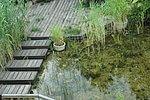 Trittplatten aus Holz im Wasser