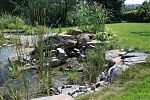 Naturbadeteich-Flachwasserbereich