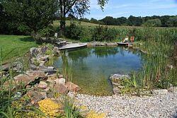neu gebauter Schwimmteich