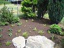 Randbereich frisch bepflanzt
