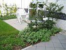 Terrasse mit Einfassungshecke