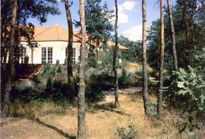 Naturgarten am Wald