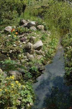 naturnaher Garten Bachlauf