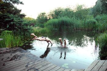 Sprung vom Steg in den Teich