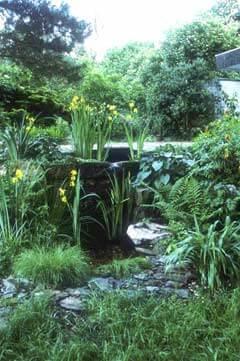 Sumpfzone und Wasserfall im Naturgarten