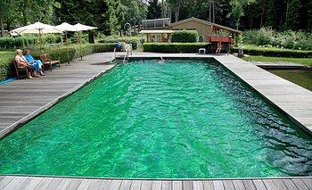 Schwimmteich Typ Kategorie 5